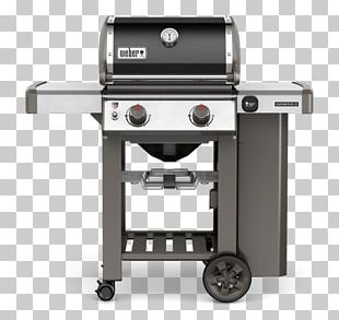 Barbecue Weber Genesis II E-210 Propane Weber-Stephen Products Natural Gas PNG