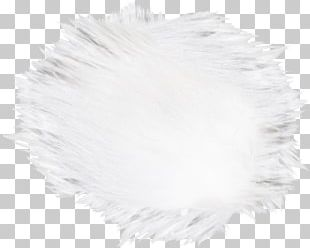 White Hair Canities Fur PNG