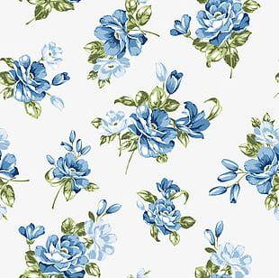 Blue Flower Background PNG