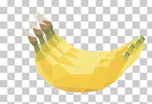 Yellow Beak Illustration PNG