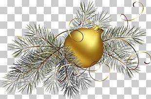 Christmas Ornament Christmas Decoration Christmas Tree PNG