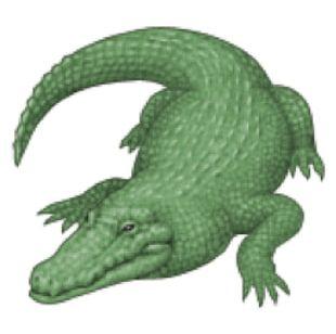 Crocodile Alligator IPhone Emoji Quiz PNG
