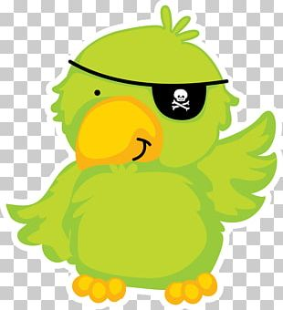 Piracy Papagaio De Pirata Pirate Parrot PNG