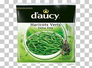 Green Bean Vegetarian Cuisine Potage Tajine Vegetable PNG