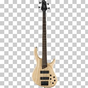 Fender Precision Bass Bass Guitar Cort Guitars Double Bass PNG
