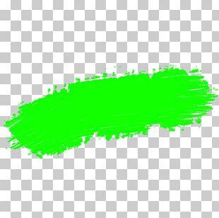 Green Brush Paint Stroke PNG