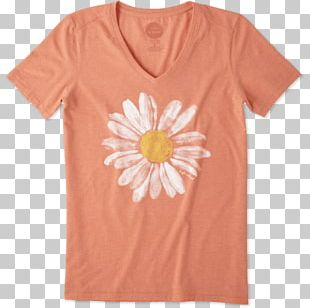 T-shirt Watercolor Painting Common Daisy Top Hoodie PNG