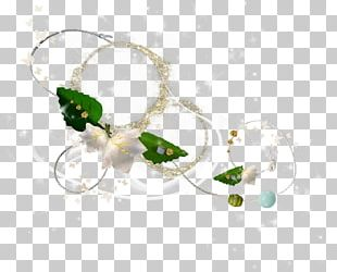 Leaf Green Illustration PNG