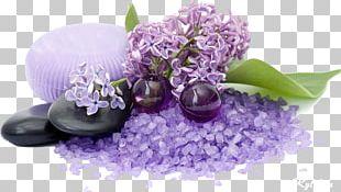 Lotion Spa Massage Freshfields Hotel Aromatherapy PNG