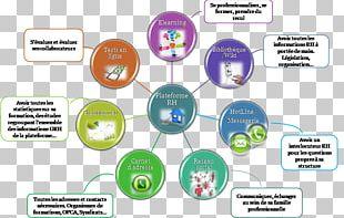 Human Resource Management Purpose Organization Innovation PNG