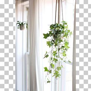 Window Curtain Floral Design Flowerpot PNG