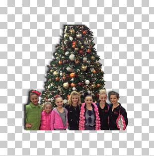 Christmas Decoration Spruce Christmas Tree Fir PNG