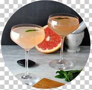 Cocktail Garnish Wine Cocktail Daiquiri Martini PNG