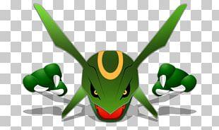 Rayquaza Pokémon Trainer Pikachu Charizard PNG