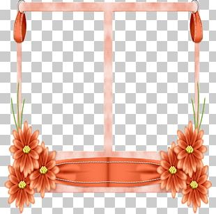 Floral Design Frames Window Decorative Arts PNG