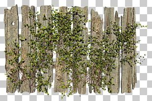 Picket Fence Garden Gate PNG