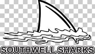 Shark Finning Fish Fin Open PNG