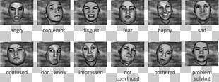 Facial Expression Emotional Expression Gesture Emotional Intelligence PNG