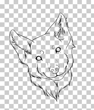 Line Art Whiskers Dog Drawing Sketch PNG