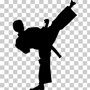 Wall Decal Kick Martial Arts Karate Taekwondo PNG