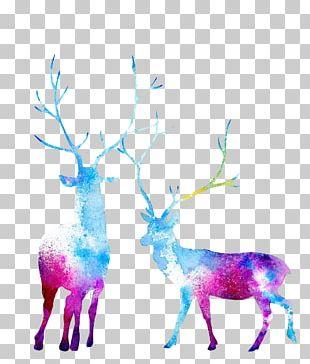 Reindeer Moose Watercolor Painting PNG