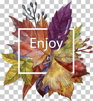 Autumn Leaves Painting PNG