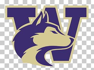 University Of Washington Washington Huskies Football Apple Cup Texas A&M University PNG