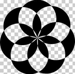 Geometric Shape Flower Circle PNG