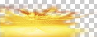 Yellow Close-up Sunlight PNG