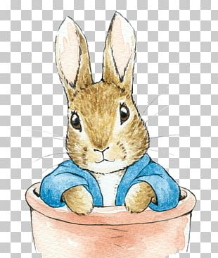 Domestic Rabbit The Tale Of Peter Rabbit Easter Bunny PNG