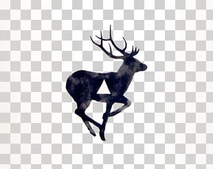 White-tailed Deer T-shirt Tattoo Moose PNG