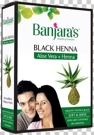 Hair Coloring Henna Aloe Vera Hair Care Human Hair Color PNG