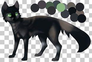 Korat Black Cat Whiskers Kitten Domestic Short-haired Cat PNG
