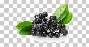 Juice Organic Food Chokeberry Fruit PNG