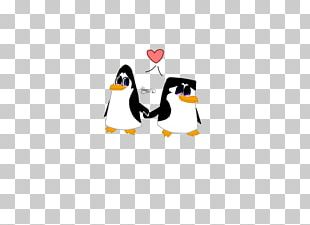 Penguin Cartoon Illustration Desktop Computer PNG