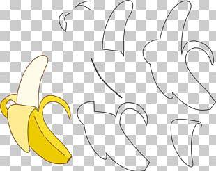 Fruit Banana Food Drawing PNG