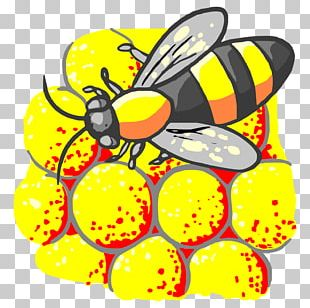 Honey Bee Monarch Butterfly Insect Bee Pollen PNG