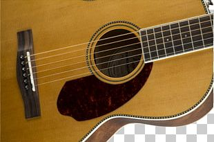 Steel-string Acoustic Guitar Musical Instruments Acoustic-electric Guitar PNG