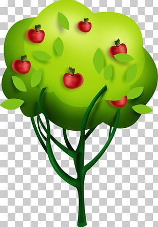 Tree Drawing Apple PNG
