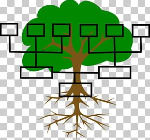 Family Tree Genealogy Extended Family PNG