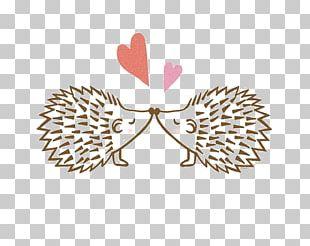 Hedgehog Wedding Invitation Love Valentines Day Illustration PNG