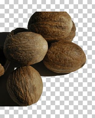 Walnut Tree Nut Allergy Ingredient VY2 PNG