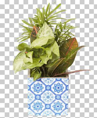 Flowerpot Leaf Floral Design Houseplant PNG