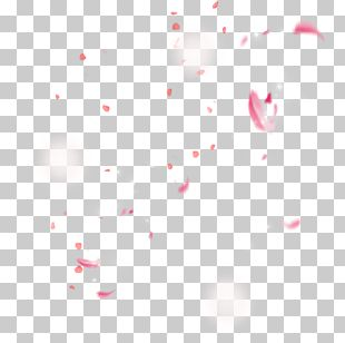 Cherry Blossom Video Icon PNG