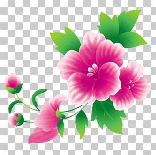 Pink Flowers Floral Design PNG