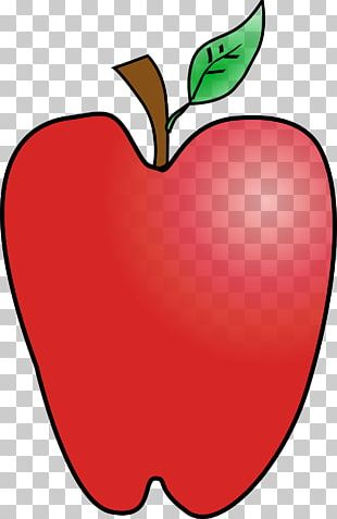 Drawing Apple PNG