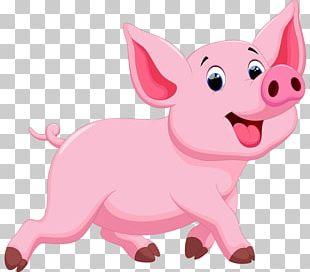 Porky Pig Domestic Pig Drawing Illustration PNG
