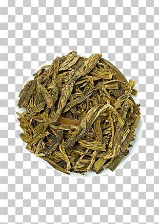 Hōjicha White Tea Nilgiri Tea Tea Plant PNG