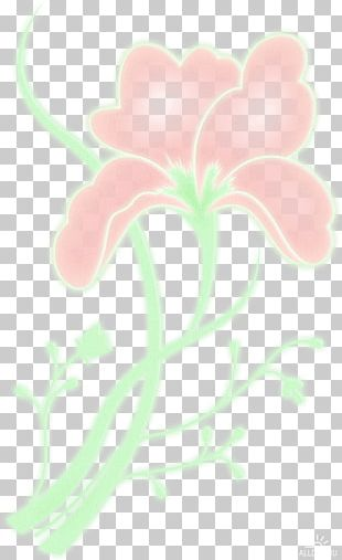 Rose Family Floral Design Petal Desktop PNG