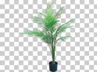 Artificial Flower Date Palm Flowerpot Plant PNG